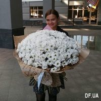 Bouquet of beautiful daisies - Photo 2