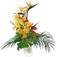 Bouquet for men - flowers and bouquets on df.ua