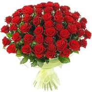 55 red roses - flowers and bouquets on df.ua