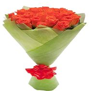 21 orange roses - flowers and bouquets on df.ua