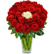 24 red roses and 1 white - flowers and bouquets on df.ua