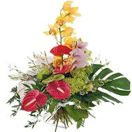 Bouquet to the man on February 23rd - flowers and bouquets on df.ua