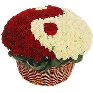 Корзина из 351белой и красной розы - цветы и букеты на df.ua