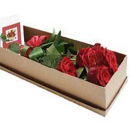 5 роз с бантом в коробке - цветы и букеты на df.ua