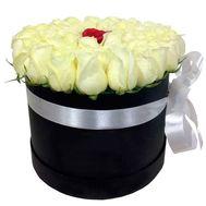 Белые розы и одна красная в коробке - цветы и букеты на df.ua