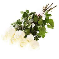 Bouquet of 7 imported white roses - flowers and bouquets on df.ua