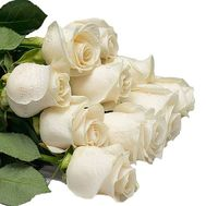 Bouquet of imported white roses - flowers and bouquets on df.ua