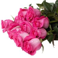 Ecuadorian pink roses - flowers and bouquets on df.ua