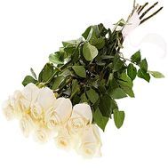 Imported white roses - flowers and bouquets on df.ua