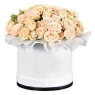 Box of 25 cream-colored roses - flowers and bouquets on df.ua