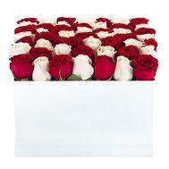 Красно белые розы в коробке - цветы и букеты на df.ua