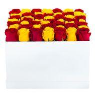 Красные и желтые розы в коробке - цветы и букеты на df.ua