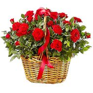 Bush roses in a pot in a basket - flowers and bouquets on df.ua