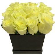 Розы белые в квадратной коробке - цветы и букеты на df.ua