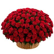 201 red rose in the basket - flowers and bouquets on df.ua