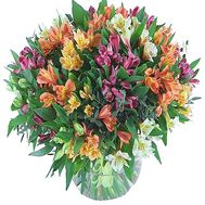 Huge bouquet of multi-colored alstromeries - flowers and bouquets on df.ua