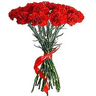 Bouquet of 25 carnations - flowers and bouquets on df.ua
