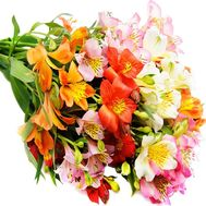 Bouquet of alstroemerias - flowers and bouquets on df.ua