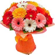 Bouquet of flowers from gerberas - flowers and bouquets on df.ua