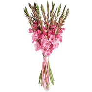 Gladiolus bouquet - flowers and bouquets on df.ua