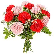 Букет гвоздик - цветы и букеты на df.ua