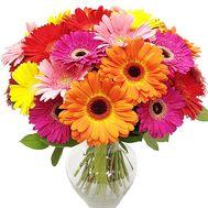 Букет из 25 гербер - цветы и букеты на df.ua