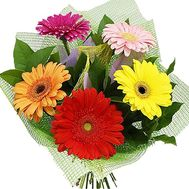 Bouquet of 5 gerberas - flowers and bouquets on df.ua