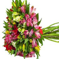 Bouquet of different color alstroemerias - flowers and bouquets on df.ua