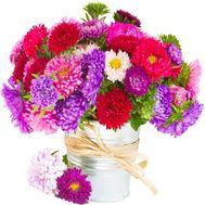 Букет из астр - цветы и букеты на df.ua