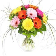Букет из герберов - цветы и букеты на df.ua