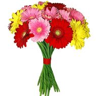 """Bouquet of gerberas"" in the online flower shop df.ua"