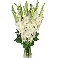 Bouquet of gladiolus - flowers and bouquets on df.ua
