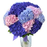 Bouquet of hydrangeas - flowers and bouquets on df.ua