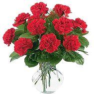 Букет из гвоздик купить - цветы и букеты на df.ua