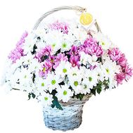 Bouquet of chrysanthemums in a basket - flowers and bouquets on df.ua