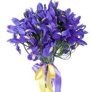 Bouquet of irises - flowers and bouquets on df.ua