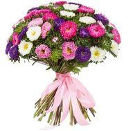 Букет разноцветных астр - цветы и букеты на df.ua
