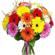 Bouquet of multicolored gerberas - flowers and bouquets on df.ua