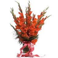 Bouquet of red gladiolus - flowers and bouquets on df.ua