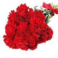 Bouquet with a red carnation - flowers and bouquets on df.ua