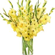 Yellow gladiolus bouquet - flowers and bouquets on df.ua