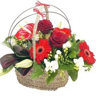 Flower Arrangement - flowers and bouquets on df.ua