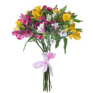 Alstroemeria flowers 7 pcs. - flowers and bouquets on df.ua