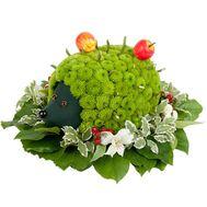 Ежик из цветов - цветы и букеты на df.ua