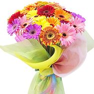 Gerbera bouquet - flowers and bouquets on df.ua