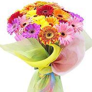Гербера букет - цветы и букеты на df.ua