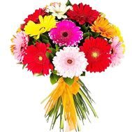 Gerberas to buy a bouquet - flowers and bouquets on df.ua
