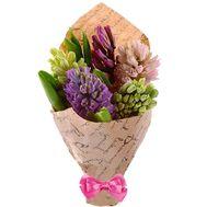 Гиацинты букет - цветы и букеты на df.ua