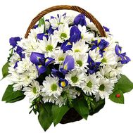 """Chrysanthemums and irises in the basket"" in the online flower shop df.ua"