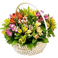 Basket of flowers for your beloved woman - flowers and bouquets on df.ua